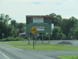 im Amish County
