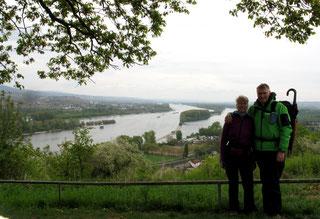 Blick vom Rochusberg auf den Rhein