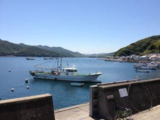 徳島県阿南市椿泊 エアコンクリーング エアコン洗浄
