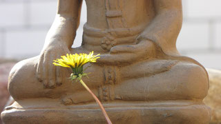 Buddha, Statur, Löwenzahn