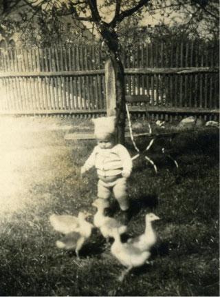 Der kleine Klaus beim Gänse hüten.