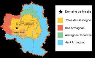 Vines in Armagnac / Côtes de Gascogne region