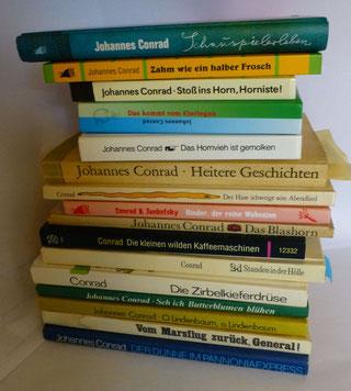 "Conrads ""Bücherberg"""