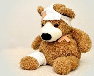 Dieser Teddybär ist vielfach verletzt und professionell verbunden. Im Erste Hilfe Hund Kurs lernen Sie am echten Hund wie!