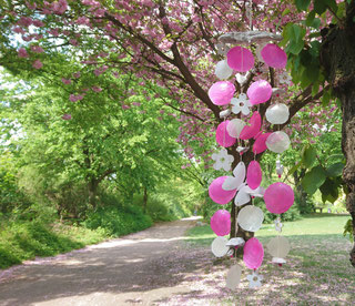 Windspiel aus weißen und pink Capiz Scheiben am rosa blühenden Kirschbaum aufgehängt.