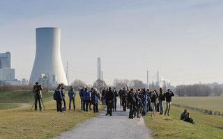 Exkursion ins Naturschutzgebiet Rheinaue Walsum (Foto: Jens Hartmann)