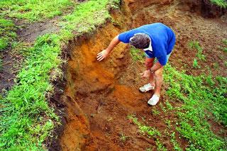 die Bodenbeschaffenheit wurde untersucht