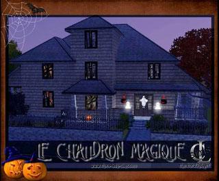 Le Chaudron Magique ( Bar de quartier Sims 3)