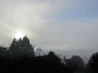 霧の夜明け (2015.5.30)