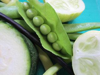 さわやかグリーンの夏野菜たち