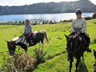 Horse Trek (Lake Okareka, Rotorua)