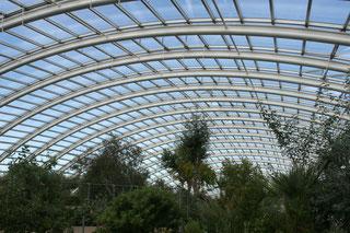 Freischwebendes Glashauskonstruktion von innen im National Botanic Garden of Wales