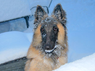 Riesenfreude mit Schnee