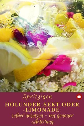 Holunder-Sekt oder Holunder-Limonade selber ansetzen - mit genauer Anleitung #fermentieren #holunder #selbermachen