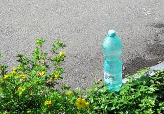 27. Juni 2016 - Hitze und Durst vorbei - Saskia allein gelassen