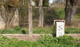 Der Grenzstein S 37 existiert heute nicht mehr - so müssen wir uns auf der Spurensuche mit dem S 36 begnügen...