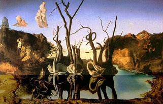 『水面に象を映す白鳥』は、一見すると、三羽の白鳥が水辺に佇んでいる絵画だが、水面に反映した白鳥の姿は象に見えるというもの。