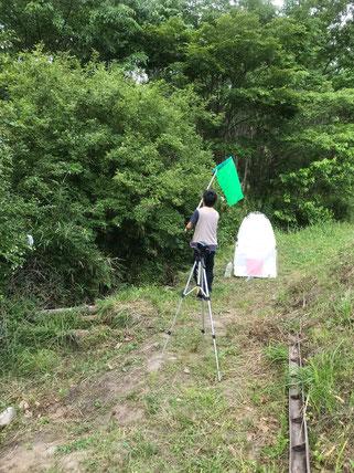 イボタノキの訪花昆虫の調査風景(撮影:寺田昂平)