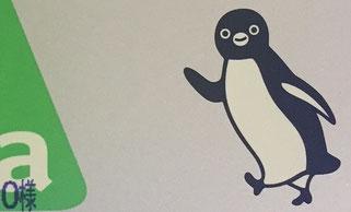 Foto 4 - Il pinguino SUICA