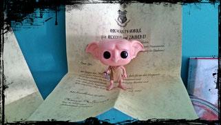 Harry Potter Diy Lisaliebtbuecher