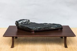 Associazione Arte e Cultura Bergamo Bonsai - Premio Castelnuovo Scrivia Suiseki