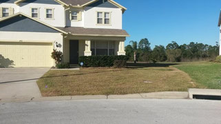 sod replacement kissimmee