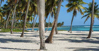 Traumstrand Insel Saona
