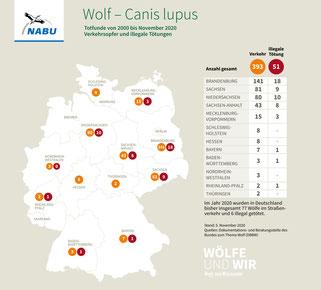 Wolf – Totfunde in Deutschland, von 2000 bis Nov. 2020, Grafik-Quelle: NABU