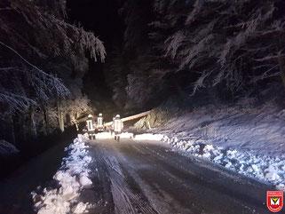 Einsatz 02/2018 - Baum über Fahrbahn