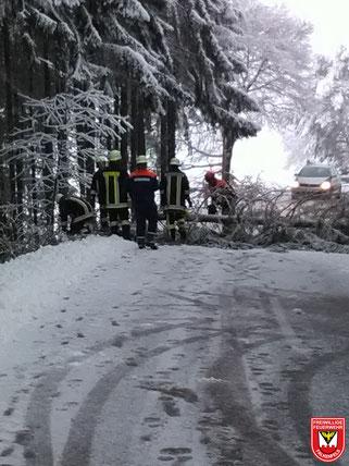 Einsatz 03/2018 - Baum über Fahrbahn