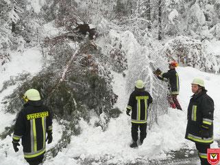 Einsatz 02/2019: THL Unwettereinsatz Bäume über Fahrbahn