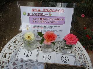 5/23 出題