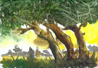 Aquarellpostkarte