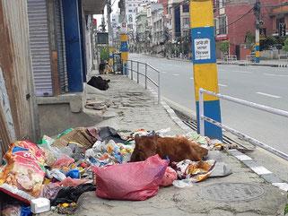 Coronavirus au Népal