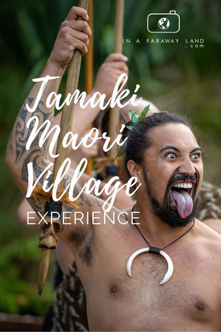 Learn how the Maoris used to live hundreds of years ago and experience their culture in the Tamaki Maori village in Rotorua.