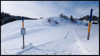 Unterwegs im Winter