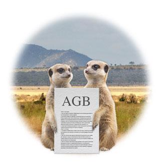 Bild AGBs