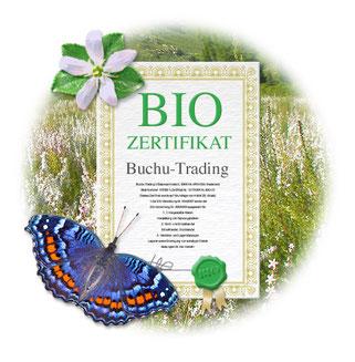Bild Bio-Zertifikat