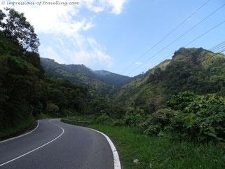 Straße durch den Dschungel im Vietnam