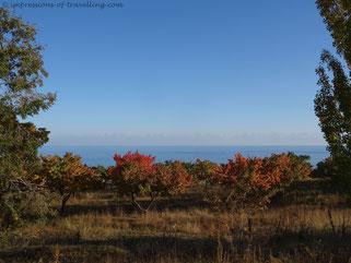 Herbstliche Farbenbracht am Issykkul
