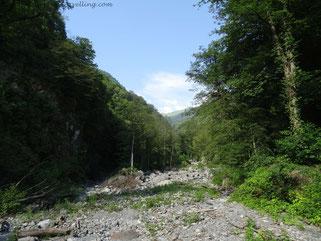 Im Nationalpark bei Lagodechi