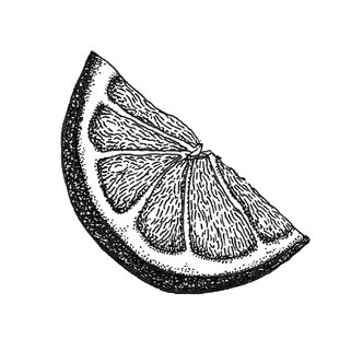 Nina Georgiev Illustration Lemon