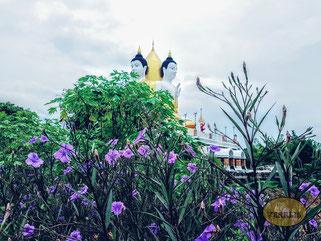 Wat Nong Khong