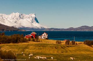 Nordkap, Lappland und die Lofoten mit dem Wohnmobil