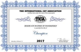 Champion TICA