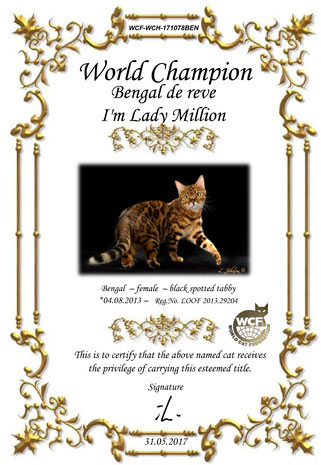 WORLD CHAMPION WCF. Bengal de reve I'm lady million, femelle bengal spotted.