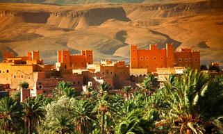 randonnée avec dromadaire Maroc