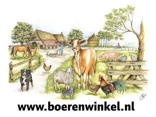 boerenwinkel winkel elsloo webshop friesland