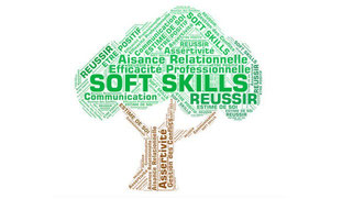 Formation Développement Personnel Soft Skills