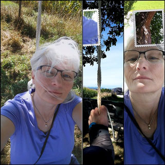 Copyright, AincaArt, Ainca Gautschi-Moser, Foto und Text, Writer, Photographer, Quersatz,